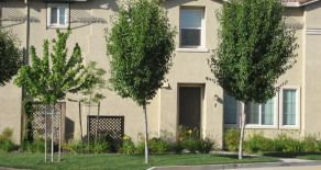 Sierra View Cir., Lincoln CA 95648 **RENTED**